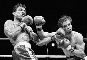boxing13.JPG